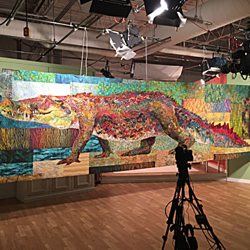 croc in QATV studio